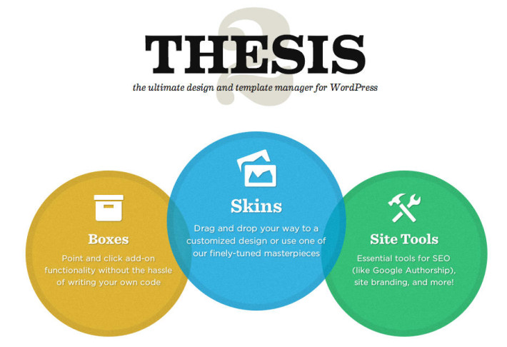 thesis vs non thesis track
