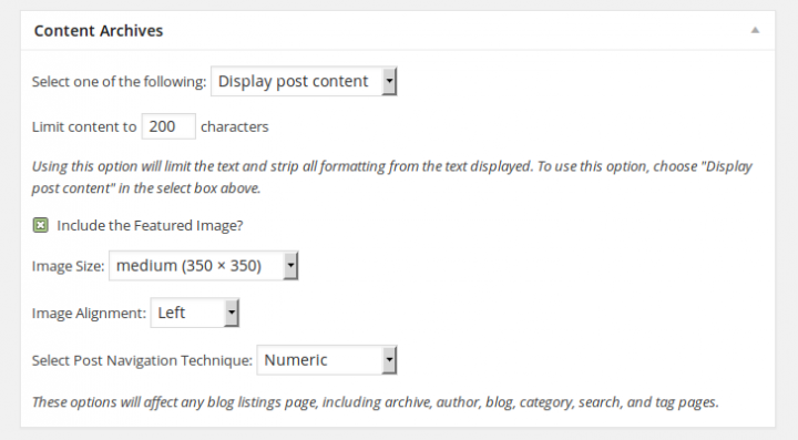 Genesis Framework Theme Settings Content Archives