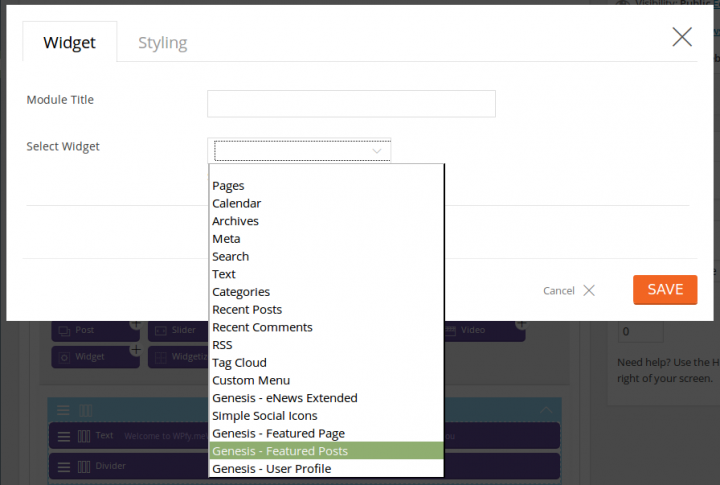 Themify Builder Widget Selection