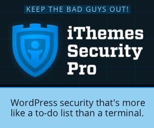 Secure & Protect Your WordPress Website